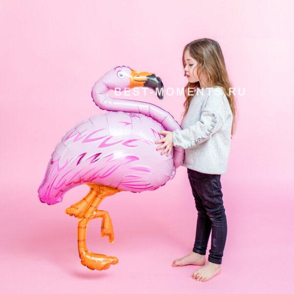 rozovyy-flamingo